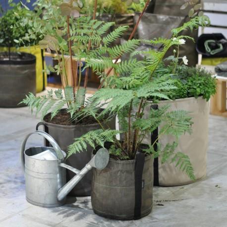 Bacsac Pot 10 liter plant