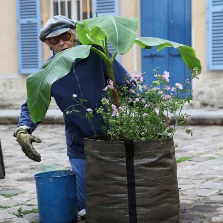 Bacsac pot 100 liter plant