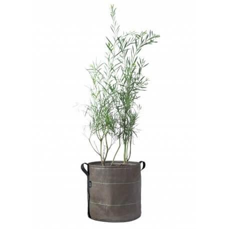 Bacsac pot 50 liter plant